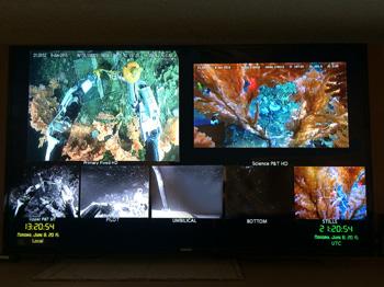 science-screens1w